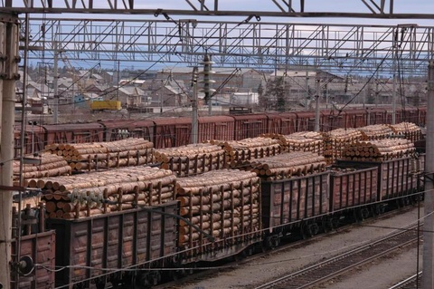 Лесной ресурс / Форум / Exchange investment / Investor for processing our raw materials