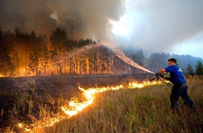 Лесной ресурс / Форум / The discussion on forest legislation / Кабмин одобрил увеличение штрафов за лесные пожары в 10 раз - на этом настаивала «Единая Россия»