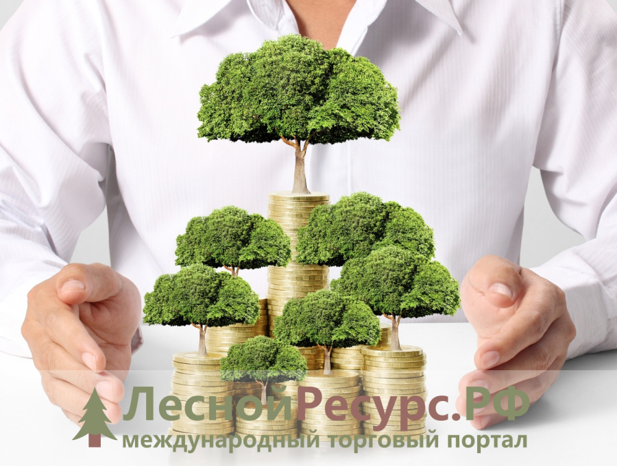 Лесной ресурс / Форум / General questions / Service for placing your company's data on our website with export privileges