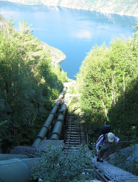 Лесной ресурс / Форум / Interesting facts and fun forest / The longest wooden staircase